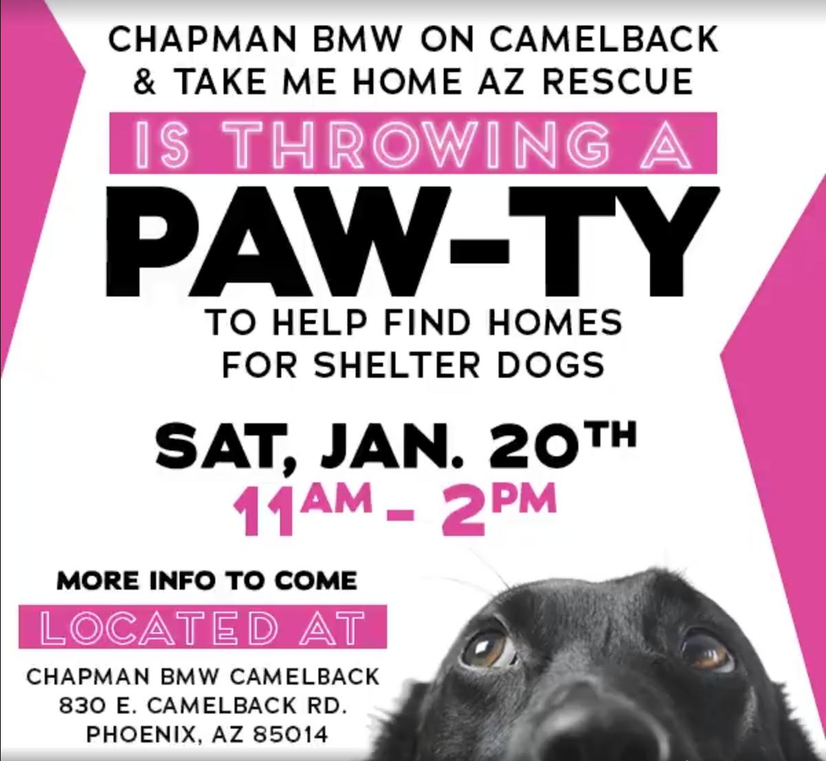 Chapman Bmw S Adoption Paw Ty Pawtown